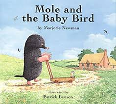mole and baby bird
