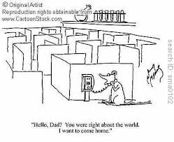 animal testing right