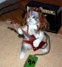 funny guitar hero pictures