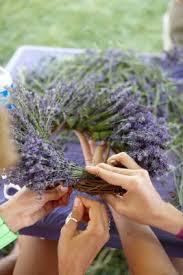 lavender wreaths