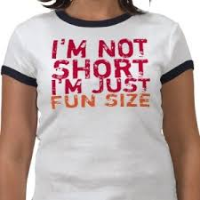 im not short im fun sized t shirt