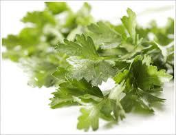 flat parsley