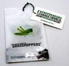 chocolate grasshoppers