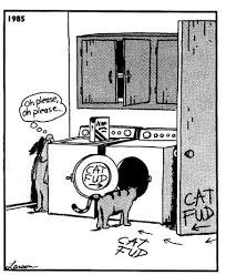 the prehistory of the far side