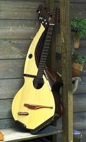 24 string guitar