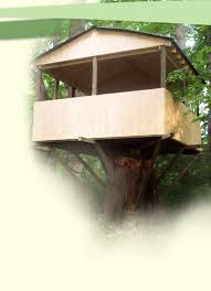 basic tree house