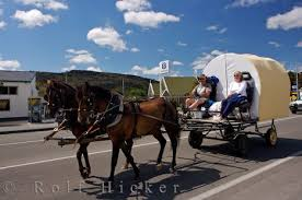 horse pulled wagons