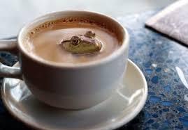 coffee anyone
