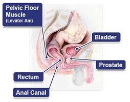 bowel pain