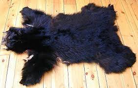 bear pelts