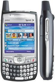 palm 700