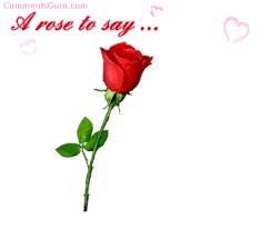 rose express