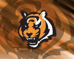 NFL Cincinatti Bengals