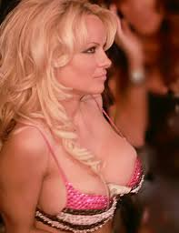 hot picture of pamela anderson