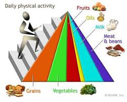 new food pyramid servings