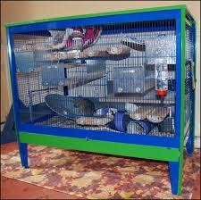 degus cage