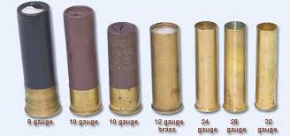 10 gauge shotgun shells