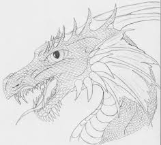 pictures of dragon heads