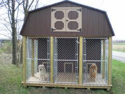 doggie kennel