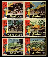 poster of africa