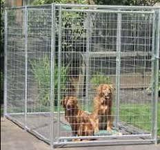 dog kennel cages