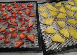 fruit drying rack