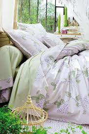 hydrangea bedding