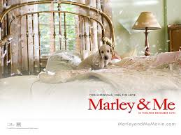 marley and me pictures
