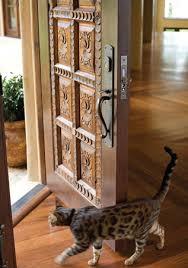 rustic front doors