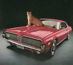 cougar mercury