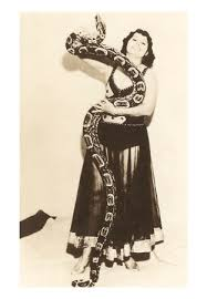 large snake pictures
