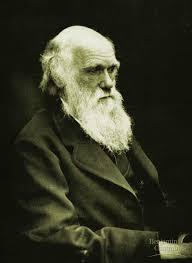 darwin Darwin non aveva ragione. Lo dicono anche gli atei.