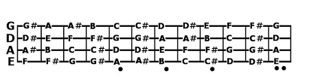 bass guitar fret board
