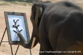 indian elephant paintings