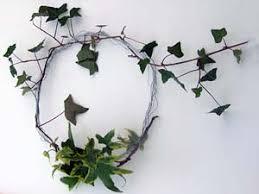 ivy wreaths