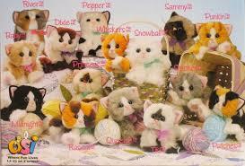 kitty kitty kitten