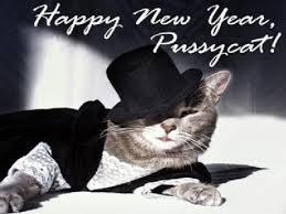 happy new year cat