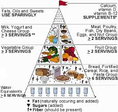 food pyramid for the elderly