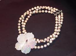 mother of pearl flower