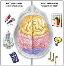 brain controls
