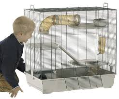 cage for rat