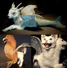 genetic animals