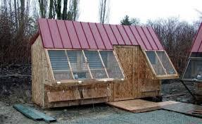 pigeon coop designs