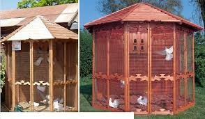 dove coops