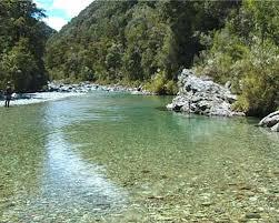 biomes freshwater