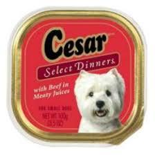 caesar dog food