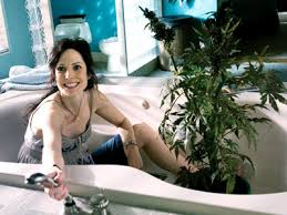 nancy from weeds