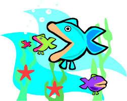 fish food chains