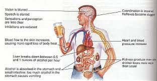 bad effect of alcohol