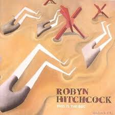 Robyn Hitchcock - I Saw Nick Drake